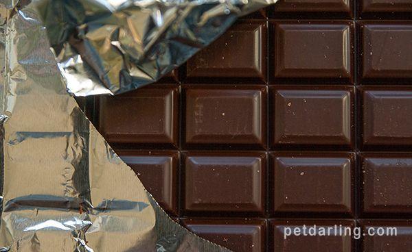 mi perro comio chocolate