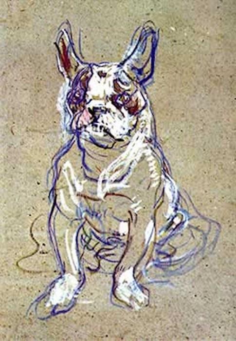 bulldog frances tolouse lautrec