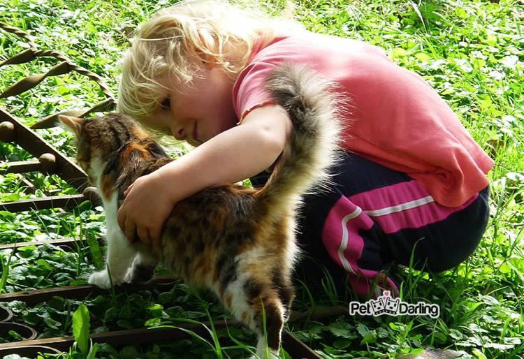 minino jugando con una niña