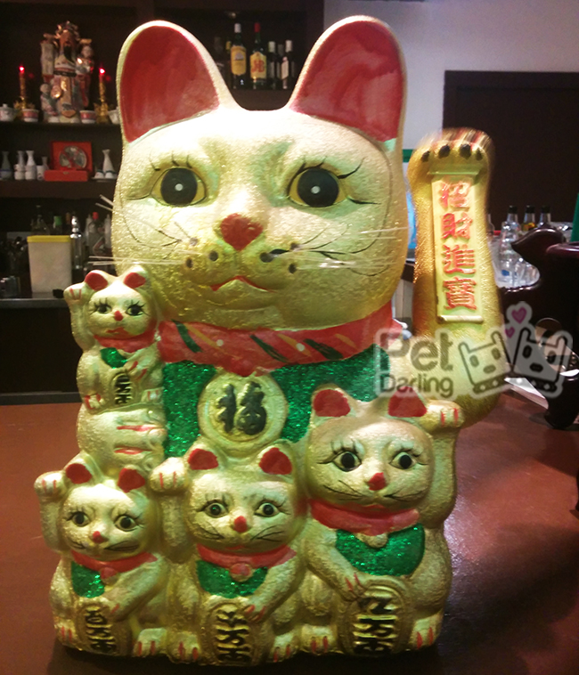 significado gato chino de la suerte