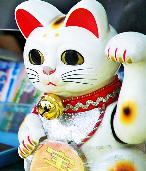 comprar gato chino de la suerte