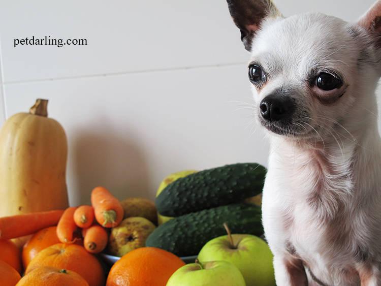 frutas y verduras para perros
