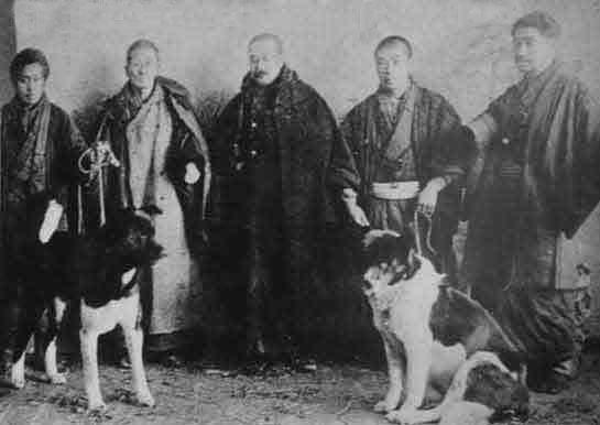 origen akita inu