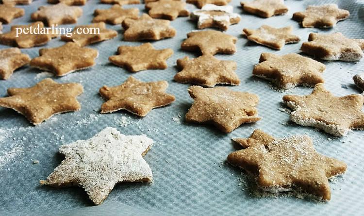 galletas para gatos como se hacen
