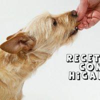 hacer comida perros con higado