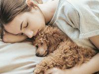 dormir con tu perro