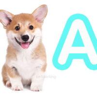nombres para perros con a